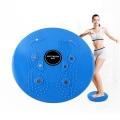 การออกกำลังกาย-แบบแอโรบิค-แม่เหล็กฟิตเนส-เอวบิด-แผ่นดิสก์-ขนาด25*3ซม.